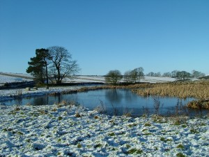 Winter in Derbyshire