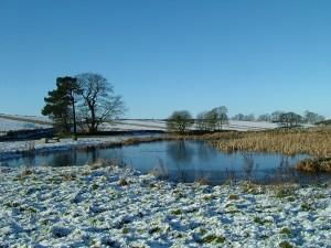 Winter in Derbyshire